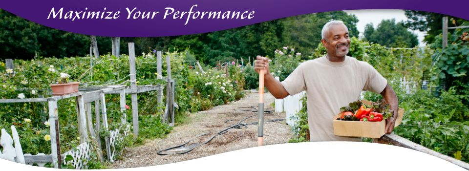 Maximize Your Performance - man tending to his vegetable garden who visited a chiropractor Victoria, BC